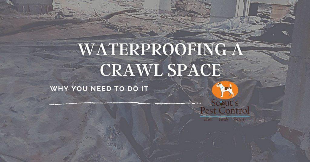 waterproofing a crawl space